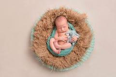 Dziecko i jego zabawka w gniazdeczku, topview Fotografia Stock