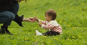Dziecko i jej matka bawi? si? z dandelions w parku zbiory