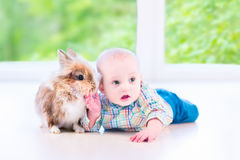 Dziecko i królik Zdjęcie Stock