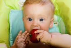 Dziecko i pomidor Zdjęcia Royalty Free