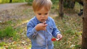 Dziecko je czekoladę w parku zdjęcie wideo
