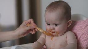 Dziecko je dyniowego puree zbiory