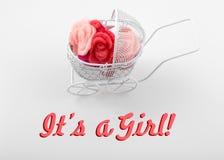 Dziecko karta - Swój dziewczyna temat Pram pełno kwiaty na białym tle nowonarodzony karciany powitanie Fotografia Stock