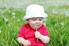 Dziecko kosztuje blowballs obrazy royalty free