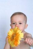 dziecko kwiat Obrazy Royalty Free