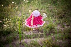 dziecko kwiat pola obrazy stock