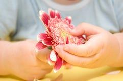 dziecko kwiat wręcza s Zdjęcia Stock