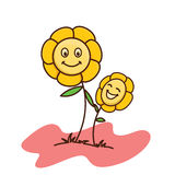 Dziecko kwiatu bielu tło Obrazy Stock