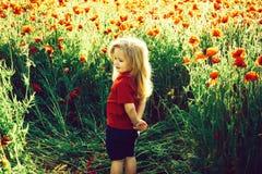Dziecko lub uśmiechnięta chłopiec z długim blondynka włosy w czerwonej koszula w kwiatu polu maczek z zielonym trzonem na natural zdjęcia stock