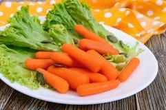 dziecko marchewki odizolowywali Mała marchewka z sałatą opuszcza na białym ceramicznym talerzu obraz stock