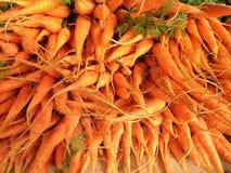 Dziecko marchewki z korzeniami przy rolnicy wprowadzać na rynek Fotografia Royalty Free