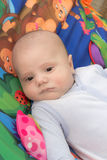 Dziecko na barwionym tle Zdjęcia Stock
