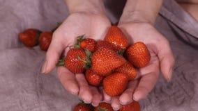 Dziecko naciera jego ręki Dziewczyna z wielkim talerzem truskawki i patrzeć kamerę i dziecka bierze jagody w rękach HD zdjęcie wideo