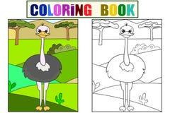 Dziecko obrazka kreskówki zwierzęcia safari Pospolity struś chodzi w polanie Wektorowa kolorystyka, czarny i biały Obrazy Stock
