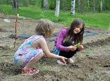 dziecko ogród Obrazy Royalty Free