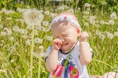 Dziecko płacze w łące z dandelions Obrazy Stock