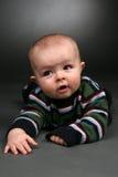 dziecko pełzająca podłogi Obrazy Royalty Free