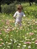 dziecko pinkin Zdjęcie Royalty Free