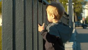 Dziecko pozycja blisko ogrodzenia zbiory wideo
