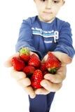 Dziecko ręki trzyma truskawki Zdjęcia Stock