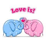Dziecko słoń w miłości na bielu Obraz Stock