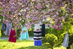 Dziecko suknie na drzewie Zdjęcie Stock