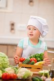 Dziecko szef kuchni Obrazy Stock