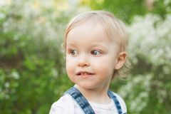 Dziecko w jabłczanym okwitnięcie ogródzie w świetle słonecznym Śliczna szczęśliwa lato blondynów dziewczyna Obrazy Stock