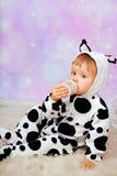 Dziecko w krowy kostiumowym pije mleku od butelki Zdjęcia Stock