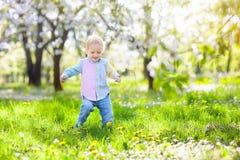 Dziecko z czereśniowego okwitnięcia kwiatem chłopcy tła Wielkanoc jajka miłych jaj trawy zielone świeżego ukryte hunt wyizolował  Obraz Stock
