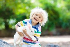 Dziecko z królikiem Wielkanoc królik Dzieciaki i zwierzęta domowe Obrazy Stock