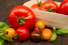 Dziedzictwo pomidory Obrazy Royalty Free
