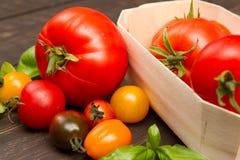Dziedzictwo pomidory Zdjęcia Royalty Free