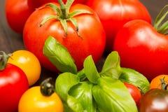 Dziedzictwo pomidory Fotografia Royalty Free