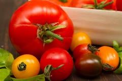 Dziedzictwo pomidory Fotografia Stock