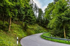 Dziegciujący drogowy cewienie przez bujny zieleni countryside_1 zdjęcia stock