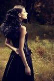 Dziejowa suknia obrazy stock