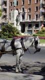 Dziejowy centrum ¡ Hiszpania Europa Zdjęcia Royalty Free