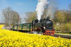 Dziejowy kontrpara pociąg na wyspie Ruegen w wiośnie Obrazy Stock