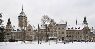 dziejowy muzealny krajowy szwajcar Obraz Royalty Free