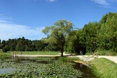 Dziejowy parkowy ` Kuzminki-Lublino ` Fotografia Royalty Free