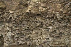 Dziejowy suszy łupkową kamienną ścianę z paprocią w jak natur góry fotografia stock