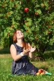 Dziewczyn cathes jabłczani Obrazy Royalty Free