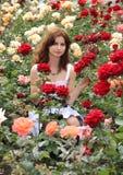 dziewczyn róże Obrazy Stock