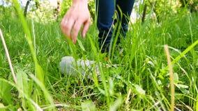 Dziewczyna aktywista podnosi w górę plastikowego butelki lying on the beach na zielonej trawie na rowerze ekologicznej energii &  zbiory
