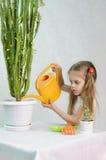 Dziewczyna nalewa od podlewanie puszki kaktusów Obrazy Royalty Free