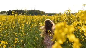 Dziewczyna bieg krzyż pole przy zmierzchem swobodny ruch zdjęcie wideo