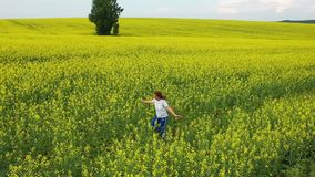 Dziewczyna biega na żółtym kwiatu polu przy zmierzchem Trutnia materia? filmowy Plenerowa rozrywka zbiory wideo