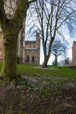 Dziewczyna biega w odległości bawić się w jardzie Durham Cathetral, UK fotografia royalty free
