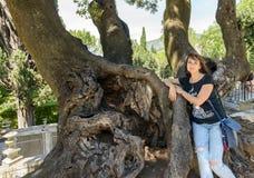 Dziewczyna blisko dużego drzewa obraz royalty free
